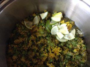 Preparing the brew pot